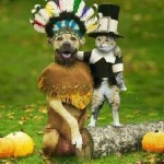 thanksgiving_dog_cat